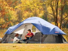 Size and design may completely differ for the different types of tents